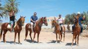 Viaggio Djerba 2010 9